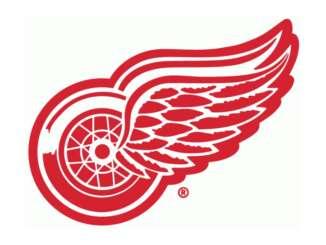 Falken NHL